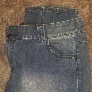 Lane Bryant Tighter Tummy Cntrol Tech Jeans